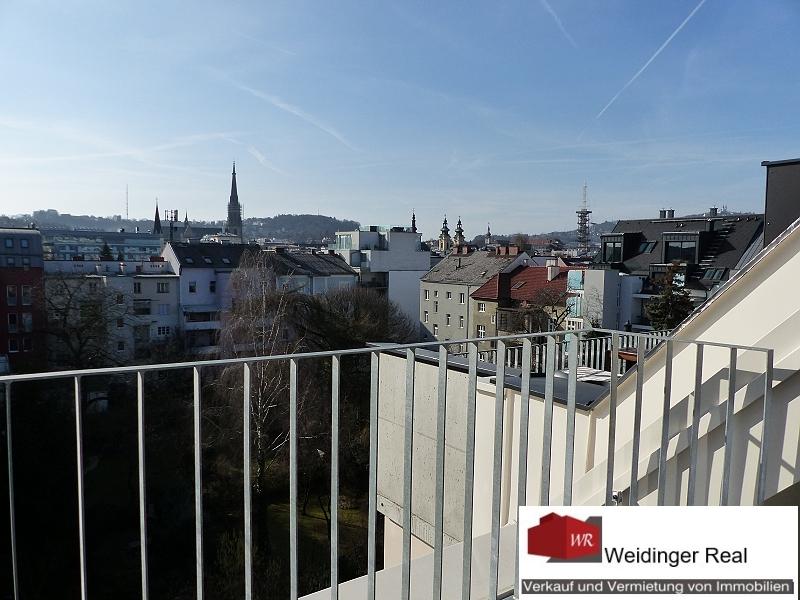 Blick von Terrasse 2